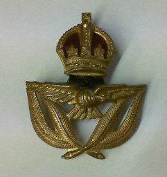 100a RAAF WO1